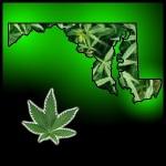 marylandmarijuana