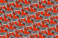28-donkeys.w710.h473