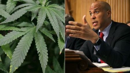 marijuana_booker